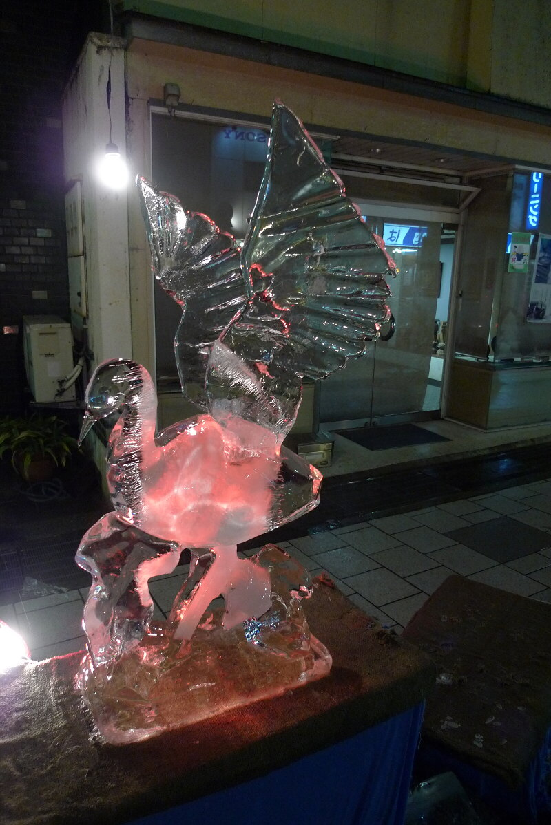 icebird0764ux.jpg